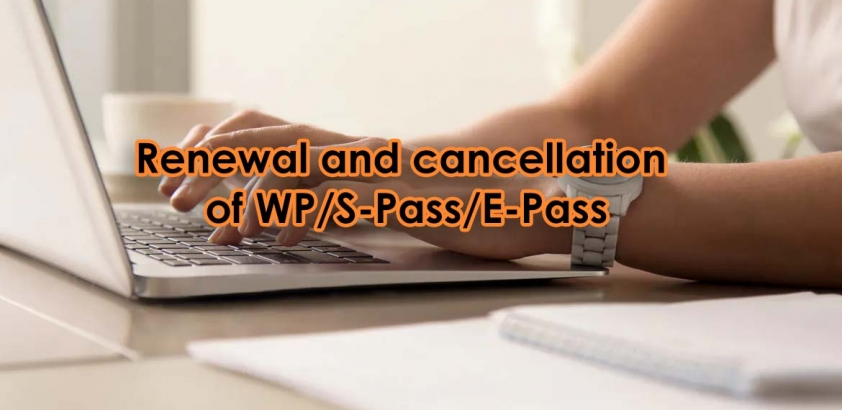 Renewal and cancellation of WP/S-Pass/E-Pass